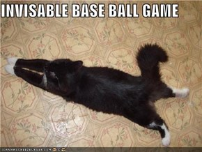 INVISABLE BASE BALL GAME