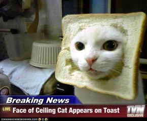 Breaking News - Face of Ceiling Cat Appears on Toast