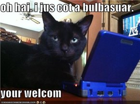 oh hai. i jus cot a bulbasuar.  your welcom
