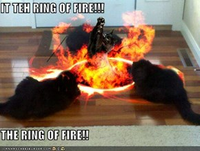 IT TEH RING OF FIRE!!!  THE RING OF FIRE!!