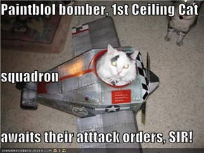 Paintblol bomber, 1st Ceiling Cat squadron awaits their atttack orders, SIR!