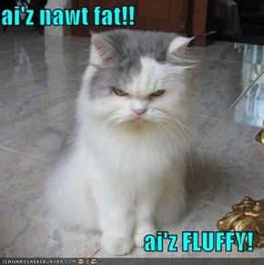 ai'z nawt fat!!  ai'z FLUFFY!