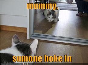 mummy,  sumone boke in