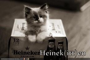 Heinek(itt)en