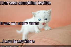 I haz seen something terrible It waz not of this world ...I saw Jersey Shore