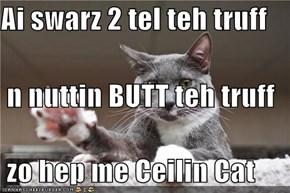 Ai swarz 2 tel teh truff  n nuttin BUTT teh truff  zo hep me Ceilin Cat