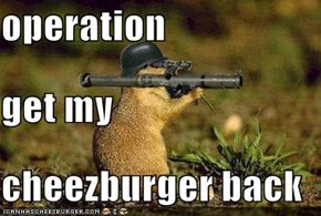 operation get my cheezburger back