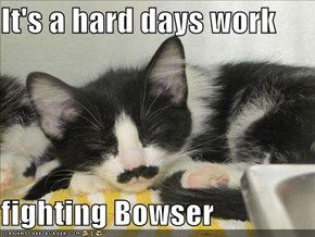 It's a hard days work  fighting Bowser