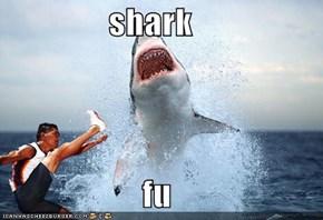 shark                       fu