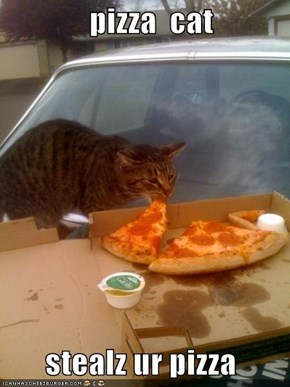 pizza  cat         stealz ur pizza