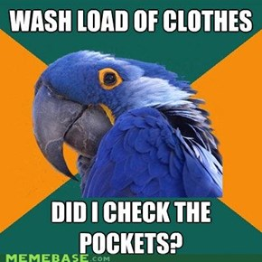 Paranoid Parrot: Laundry Day