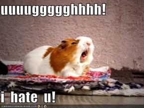 uuuuggggghhhh!  i  hate  u!