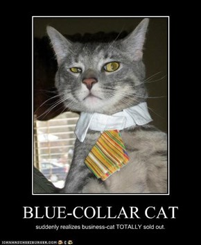 BLUE-COLLAR CAT
