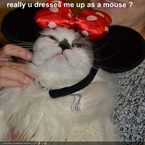 really u dresses me up as a mouse ?