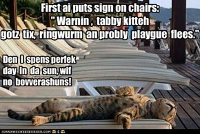 "First ai puts sign on chairs: "" Warnin ,  tabby kitteh gotz  tix,  ringwurm  an probly  playgue  flees."""