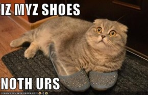 IZ MYZ SHOES
