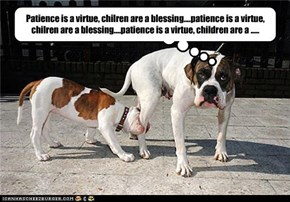 Patience is a virtue, chilren are a blessing....patience is a virtue, chilren are a blessing....patience is a virtue, children are a .....