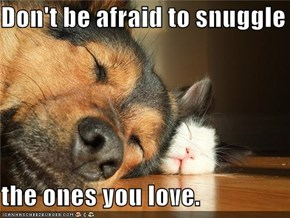 Don't be afraid to snuggle  the ones you love.