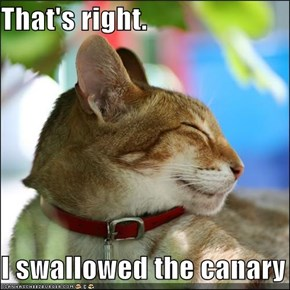 That's right.  I swallowed the canary