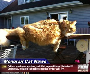"Monorail Cat News - Critics yowl over system, call Fed expenditures ""bloated.""  Cutbacks, reliable schedules needed or fur will fly."
