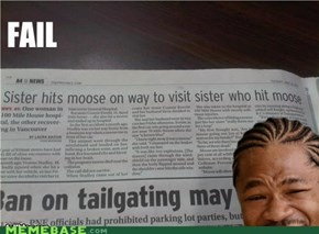 Yo sis, i herd you like moose...