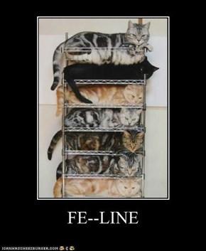 FE--LINE