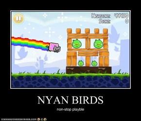 NYAN BIRDS