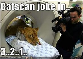 Catscan joke in..  3..2..1..
