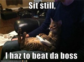 Sit still,    I haz to beat da boss