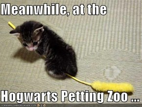 Meanwhile, at the   Hogwarts Petting Zoo ...