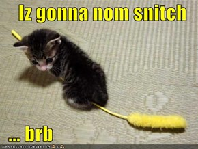 Iz gonna nom snitch    ... brb