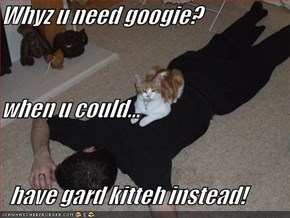 Whyz u need googie? when u could...   have gard kitteh instead!