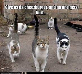 Give us da cheezburger, and no one gets hurt...