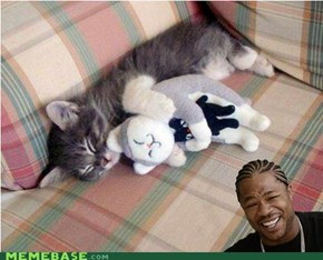 Yo Cat