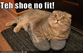 Teh shoe no fit!