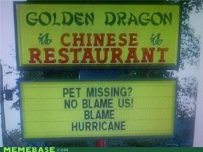 Missing Pet? No Blame Chinese! Blame Hurricane!