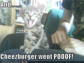 And........  Cheezburger went POOOF!