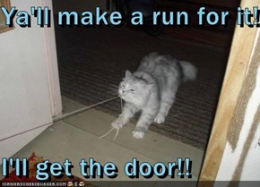 Ya'll make a run for it!!  I'll get the door!!