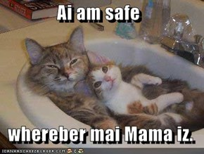 Ai am safe    whereber mai Mama iz.