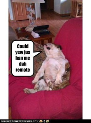 Could yew jus han me dah remote?