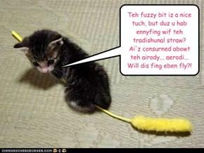 broom shoppin kitteh iz a savvy consoomur