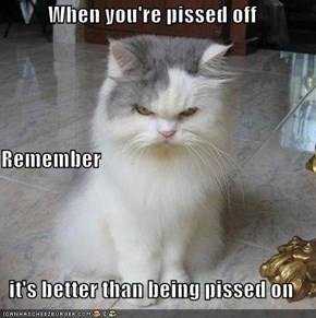 When you're pissed off Remember it's better than being pissed on