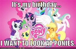 It's my birthday...     I WANT TO LOOK AT PONIES.