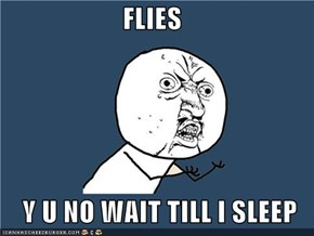 FLIES  Y U NO WAIT TILL I SLEEP