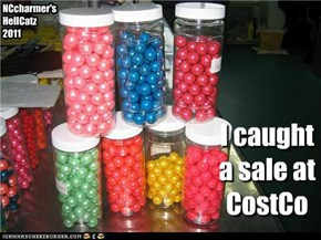 I caught a sale at CostCo