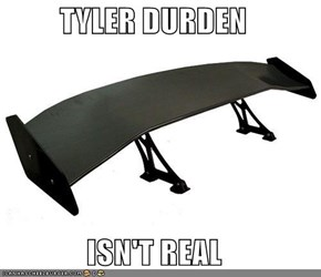 TYLER DURDEN  ISN'T REAL