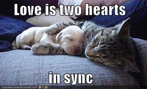 Love is two hearts  in sync