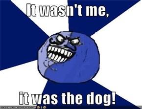 It wasn't me,  it was the dog!