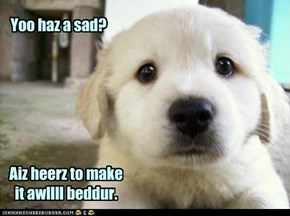 Puppy comfort