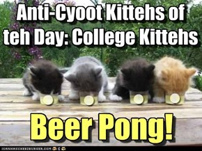 Anti-Cyoot Kittehs of teh Day: College Kittehs playing Beer Pong! :P